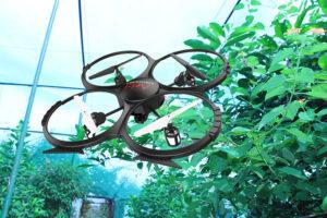 FPV Version U818A drone reviews
