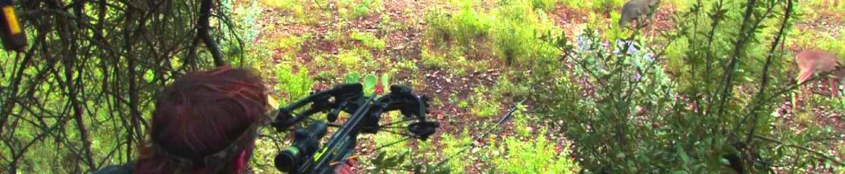 Best crossbow for hunting deer (Reviewed September 2019)